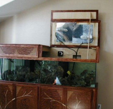 & Custom Aquarium Cabinets Designed by Shinn Custom Woodworks